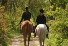 ruta-a-caballo-zona-occidente-para-dos-personas